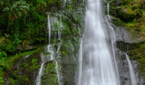 A waterfall flow in a green envrionment